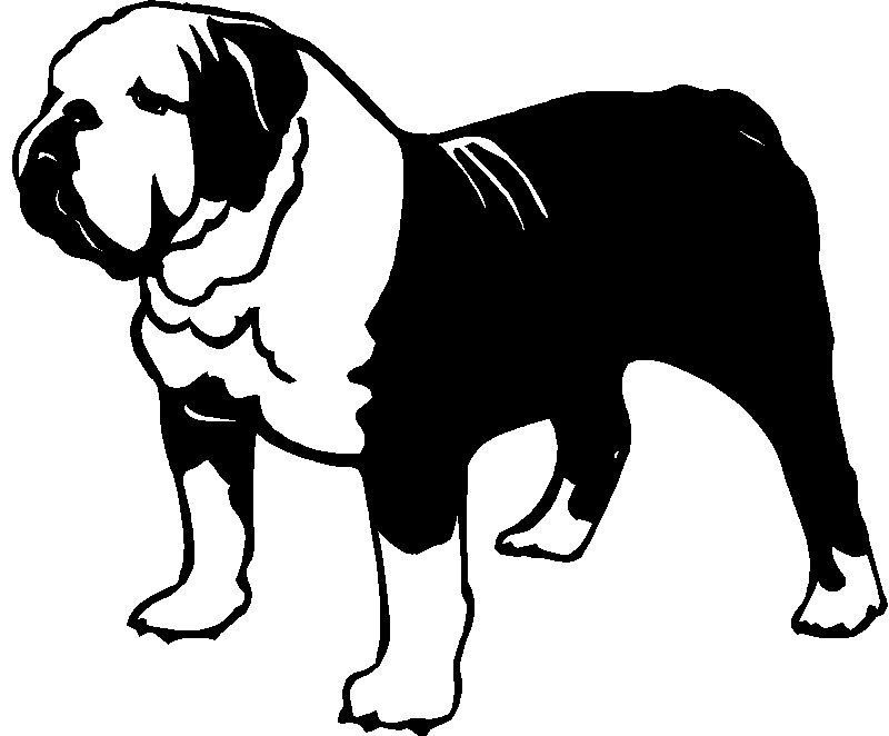 Bulldog Bull Dog Sticker Graphic Decal