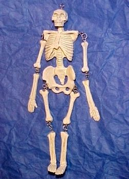 Dollhouse Mini Jeanetta Kendall Human Skeleton Model